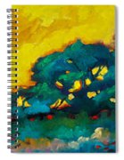 Abstract 01 Spiral Notebook
