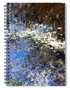 Abstract 06-03-09b Spiral Notebook
