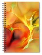 Abstract 061410a Spiral Notebook