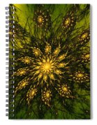 Abstract 090110 Spiral Notebook
