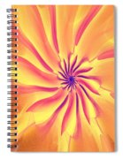 Abstract 090510 Spiral Notebook