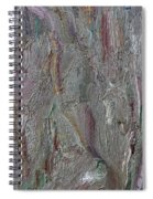 Abstract 409 Spiral Notebook