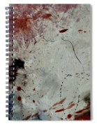 Abstract  690140032 Spiral Notebook