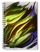 Abstract 7-26-09-a Spiral Notebook