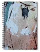 Abstract  9036 Spiral Notebook