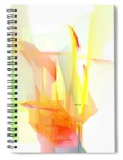 Abstract 9508 Spiral Notebook