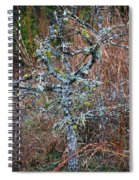 Abstract And Lichen Spiral Notebook
