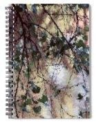 Abstract Birch Spiral Notebook