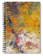 Abstract Composite Spiral Notebook