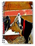 Abstract Cows Spiral Notebook
