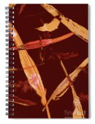 Abstract Feathers Falling On Brown Background Spiral Notebook