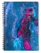 Abstract Fish Spiral Notebook