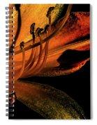 Abstract Flower Golden Red Spiral Notebook