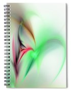 Abstract Fractal 052810  Spiral Notebook