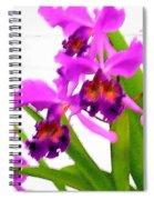 Abstract Iris Spiral Notebook
