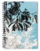 Abstract Locust Spiral Notebook
