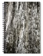 Abstract Monochrome Bark Spiral Notebook