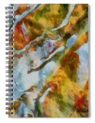 abstract mountains I Spiral Notebook