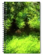 Abstract Nature 834 Spiral Notebook