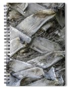 Abstract Nature Tropical Palm Tree Bark 1873a Spiral Notebook