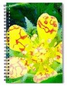 Abstract Of A Wild Buttercup Flower Spiral Notebook