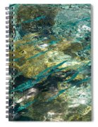 Abstract Of The Underwater World. Production By Nature Spiral Notebook