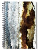Abstract One Spiral Notebook