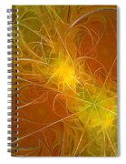 Abstract Orange Spiral Notebook