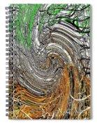 Abstract Reeds Spiral Notebook