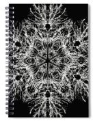 Abstract Snowfalke Spiral Notebook