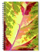 Abstract Summer's End Spiral Notebook