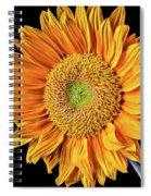 Abstract Sunflower Spiral Notebook