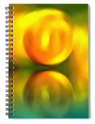 Abstract Sunset Reflection Spiral Notebook