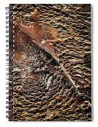 Abstract Surface Bumpy Stone Spiral Notebook