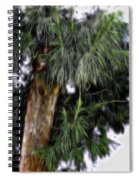 Abstract Tree 8 Spiral Notebook