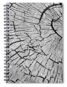 Abstract Tree Cut Spiral Notebook