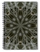 Abstract Wildflower 11 Spiral Notebook
