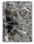 Abstract Wildflower 7 Spiral Notebook