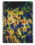 Abstract11-06-09 Spiral Notebook