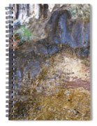 Abstraction In Color And Texture From Wet Rock Spiral Notebook