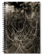 Abstractions 002 Spiral Notebook