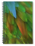 Abstractions From Nature - Pigeon Feathers Spiral Notebook