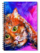 Abstrcat Spiral Notebook