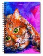 Abstrcat Spiral Notebook