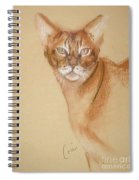 Abyssinian Spiral Notebook
