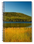 Acadia, National Park Shoreline And Marsh Maine Spiral Notebook