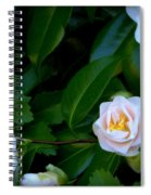 Accents Of Love In Color Spiral Notebook