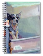 Acd Delivery Boy Spiral Notebook