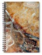 Ace Of Wands Spiral Notebook