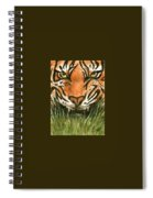 Aceo Tiger Spiral Notebook